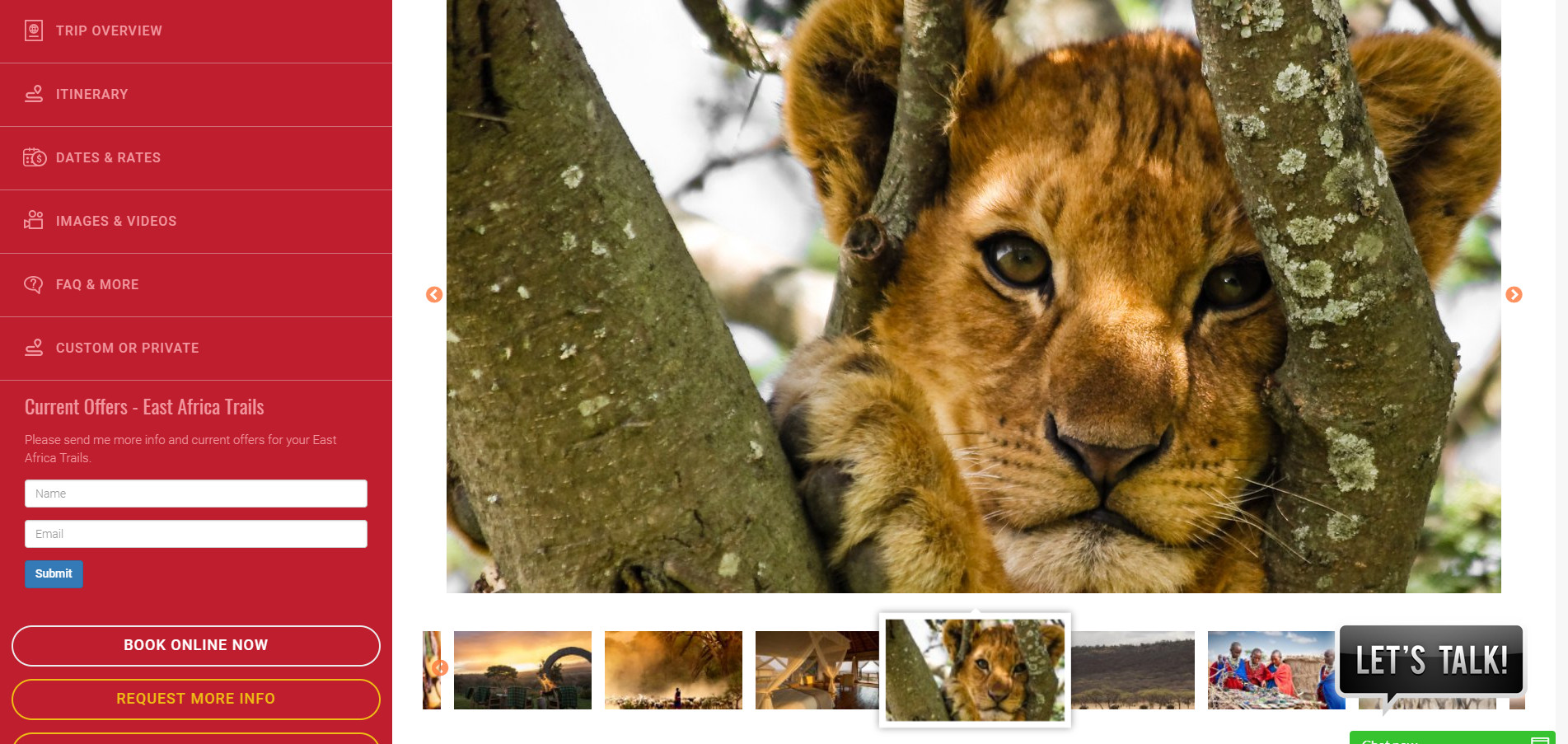 showcase of pictures on website layout for safari tour operators